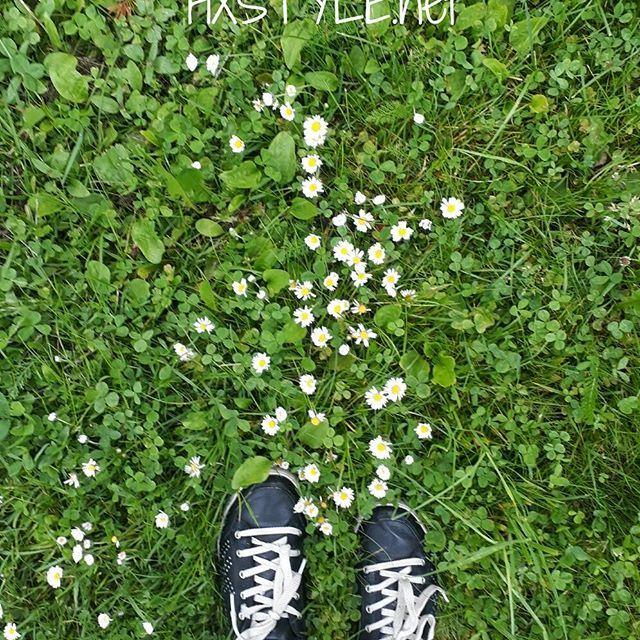 LUONTO. KESÄ. Ulkoilu, liikunta...Minun ELÄMÄNTAPA&Tyyliä. BLOGI 28.6.2017 Tykkään Katsella, tutkia ja kävellä LUONNOSSA, PUISTOISSA, PUUTARHOISSA jne...Sinä? ☺#elämäntapa #luonto #katsele #tutki #puistot #puutarhat #luonto #metsät #suosikit #blogi #suosittelen #kaupunki #maaseutu #mökkielämä ❤⏰☺