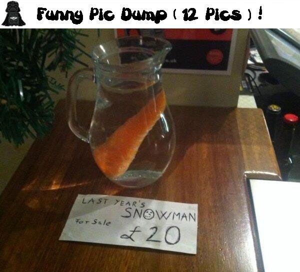 Funny Pic Dump (12 Pics) !