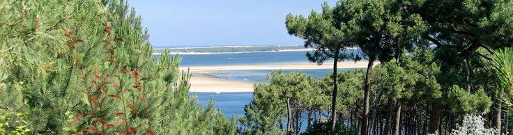 Camping Westfrankreich Atlantk - Bassin Arcachon, Panorama du Pyla, empfehlung hundeforum z.b.   Mobilehome: Von 31/08/2014 bis 10/09/2014 (10 Nächte) = 660,-
