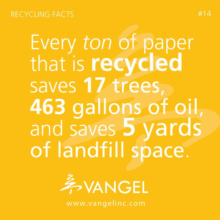recycling paper facts Recycling facts aluminum recycling a used aluminum can is recycled and back on the grocery shelf as a new can in as little as 60 days paper recycling to produce each week's sunday newspapers, 500,000 trees must be cut down.