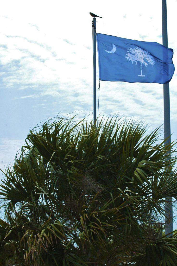 south carolina flag meaning