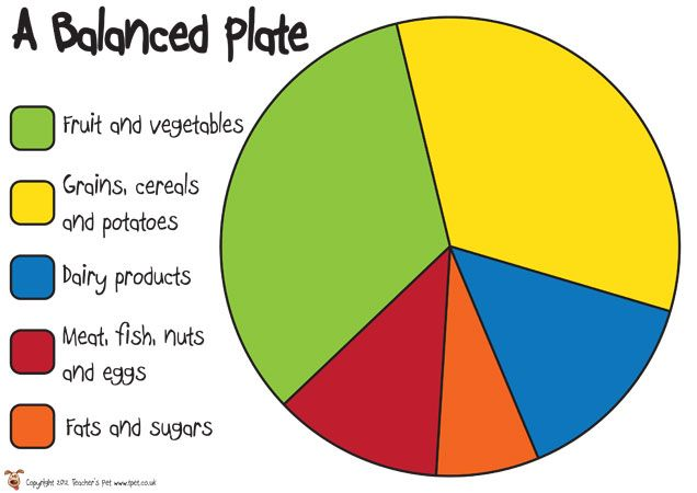 Teacher's Pet - A Balanced Plate Poster - FREE Classroom Display Resource - EYFS, KS1, KS2, healthy, eating, diet, carbohydrates, protein, d...