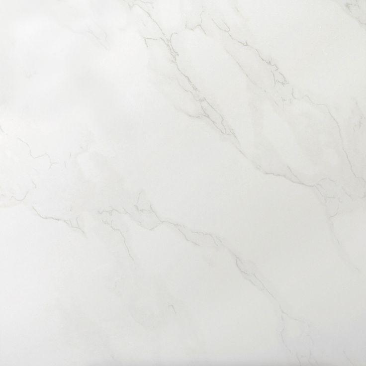 "Paladino 12"" x 12"" Porcelain Field Tile in Albanella"
