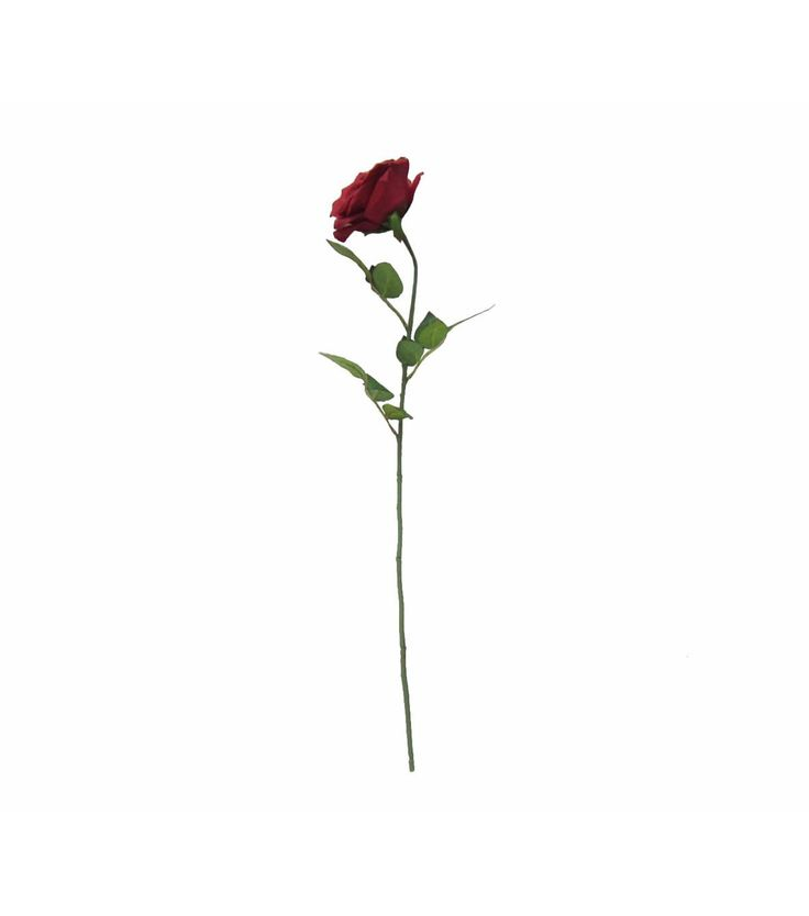 Use the Bloom Room Rose Stem to create an eye-catching floral arrangement that will last throughout the year. This artificial floral stem has plenty of vibrant leaves and a single gorgeous rose blosso                                                                                                                                                     More