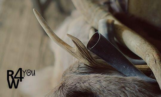 Hertengeweien en koeienhoorns,