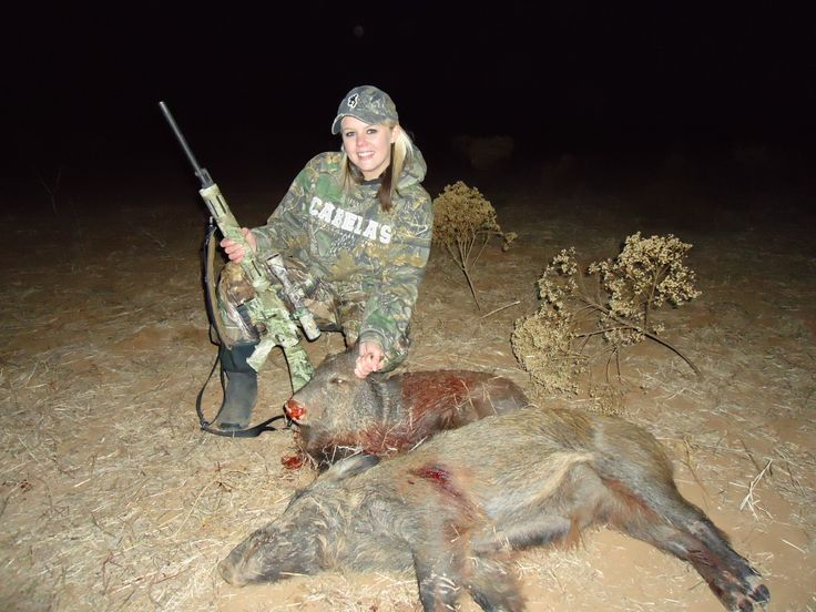 Pig Hunting in Texas