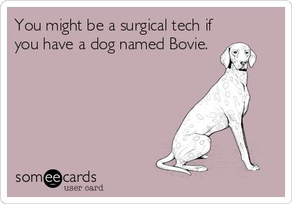 You might be a surgical tech if you have a dog named Bovie.