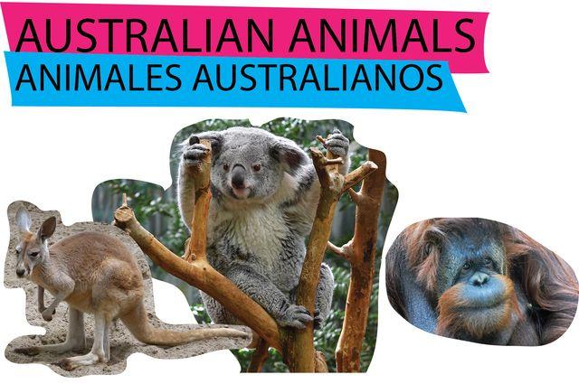 Los animales en inglés y en español: ANIMALES AUSTRALIANOS Y ASIÁTICOS EN INGLÉS
