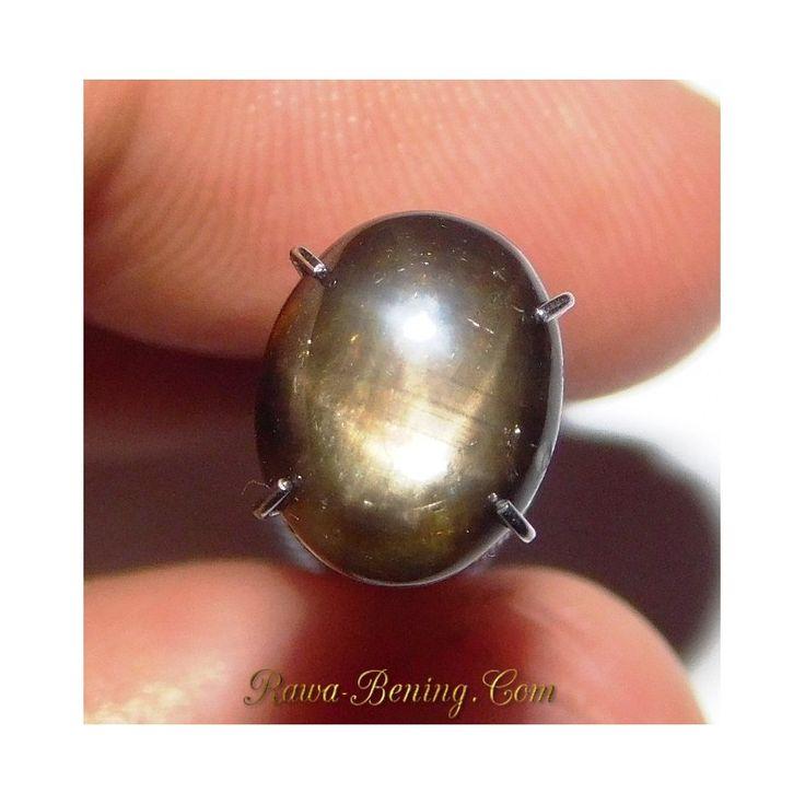 Promo Batu Mulia Natural Black Star Sapphire Oval Cabochon 2.74 carat