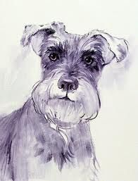 Image result for Outline drawings of Schnauzer dogs