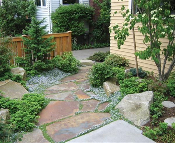 slate garden landscaping Best 25+ Slate walkway ideas on Pinterest | Garden