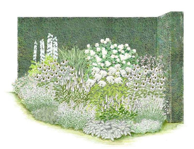 52 best garten 6 wege beete images on pinterest landscaping plants and forests. Black Bedroom Furniture Sets. Home Design Ideas
