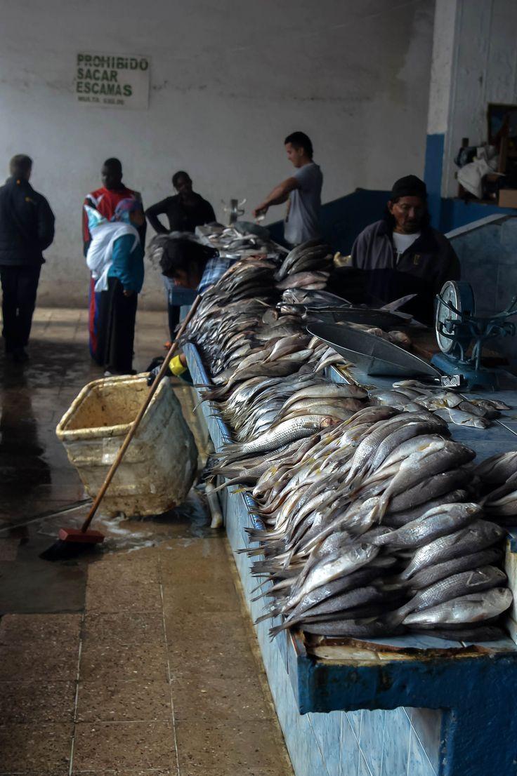 Seafood at Mercado Municipio in Otavalo, Ecuador | heneedsfood.com