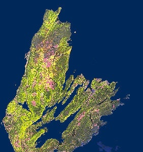 Satellite Image of Cape Breton