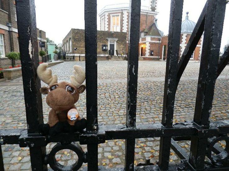 Mr. Moose at the Royal Observatory gate.