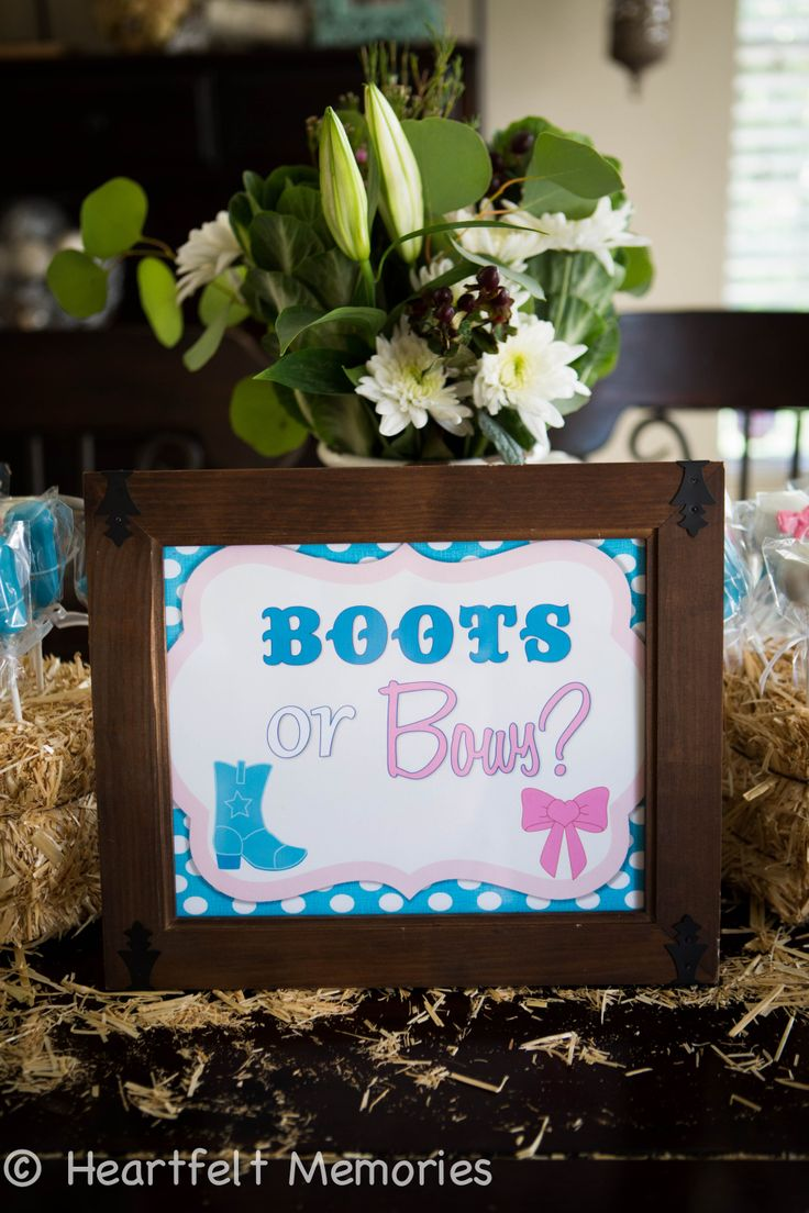 25 best Gender Reveal Party Ideas images on Pinterest
