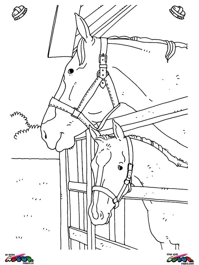 Full Size Of Coloring Pageslovely Horses Coloring Page Running Horse