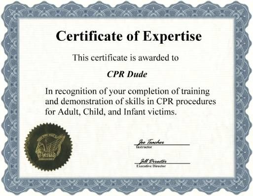 excellent free online first aid certification