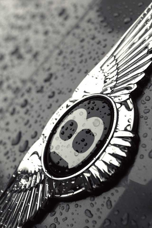 So many wing logos, some of them great. This is the Bently