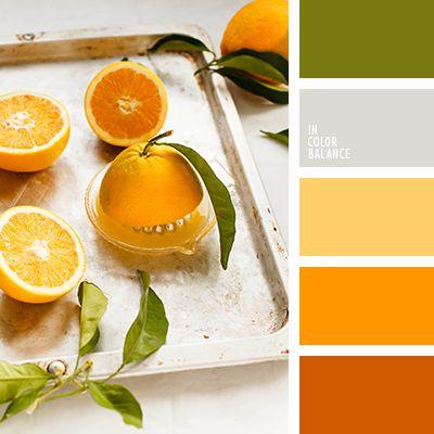 апельсиновый, насыщенный оранжевый, оттенки оранжевого, рыжий, светло-оранжевый, серый, тёмно-зелёный, теплый зеленый, теплый оттенок серого, цвет апельсина, цвет листьев базилика, цветовое сочетание лета.