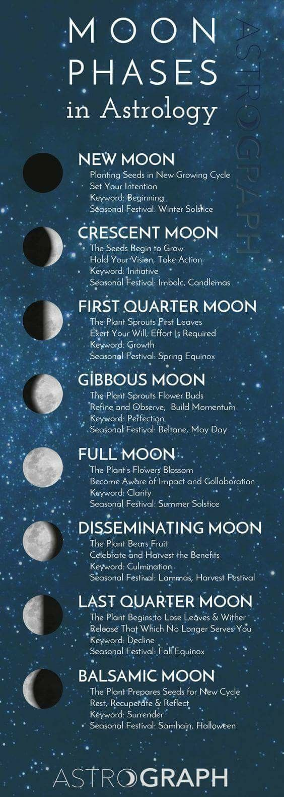 Moon Phases in Astrology