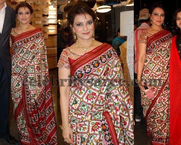 Bina Mehta Pochampally Saree
