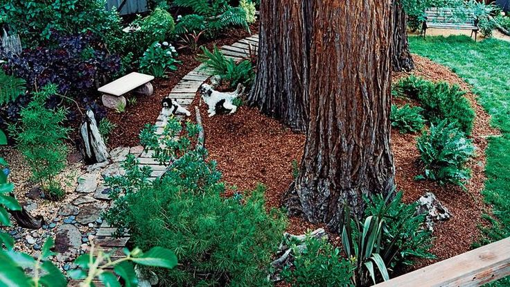 Best 25 Dog Proof Fence Ideas On Pinterest Backyard
