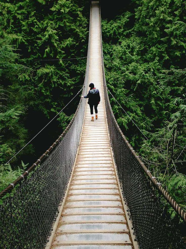 Lynn Canyon was opened as a park in 1912 and is home to a beautiful old growth forest, rushing green-hued river, dark canyon, and (best of a...