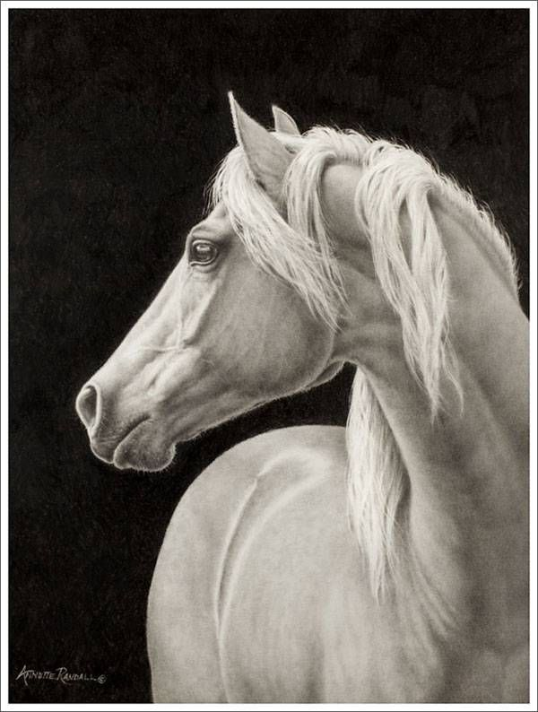 Western Art by Annette Randall; Horses and Ranch Life In Paintings and Pencil