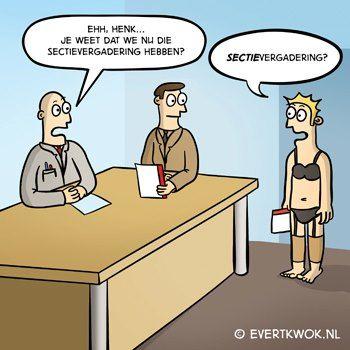 sectievergaderingen