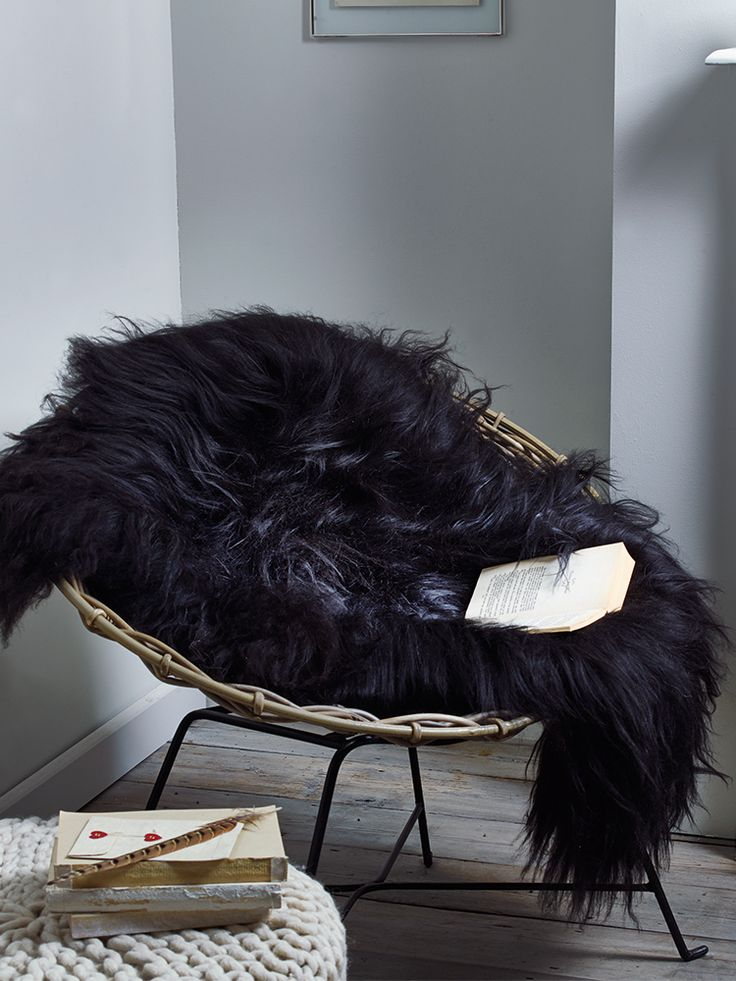 Icelandic Sheepskin Hide Rug - Black  |  Cox & Cox