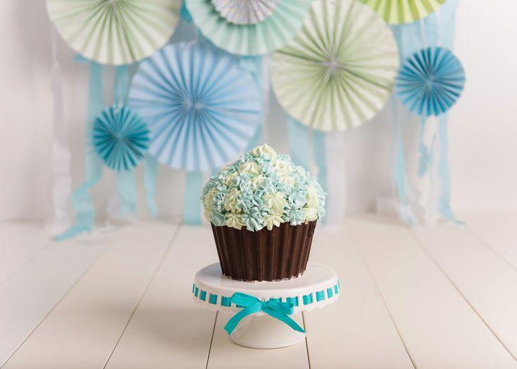 Decorating Ideas > Vancouver BC Cake Smash Photographer Serving West  ~ 181717_Birthday Party Ideas Richmond Bc