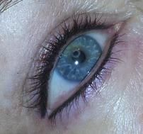 Would love to do this lash enhancement just on the upper lash line. Permanent makeup