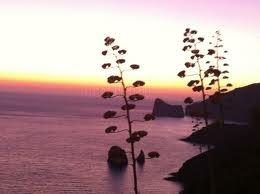 En la Isla de Cerdeña (Italia)  Uno de los mejores atardeceres que he visto en mi vida.  Altamente recomendable.