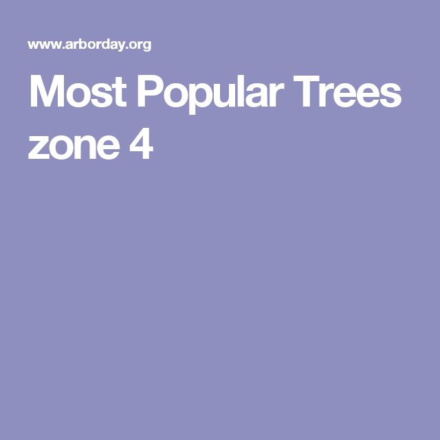 Most Popular Trees zone 4