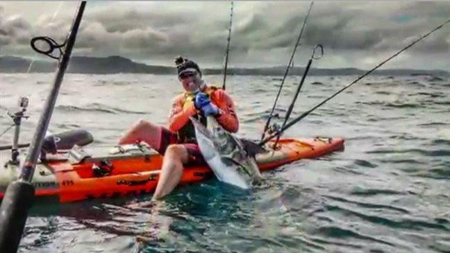Kayaker reels in monster marlin while kayak fishing off Coffs Harbour coast