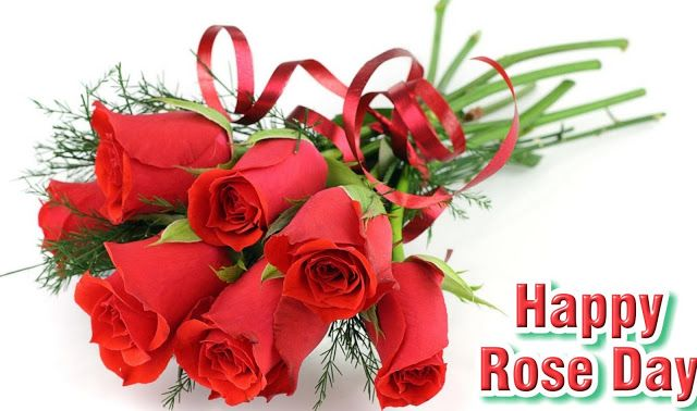 Happy Rose Day 2018 Messages Images Pics Wishes HD Wallpapers #HappyRoseDay