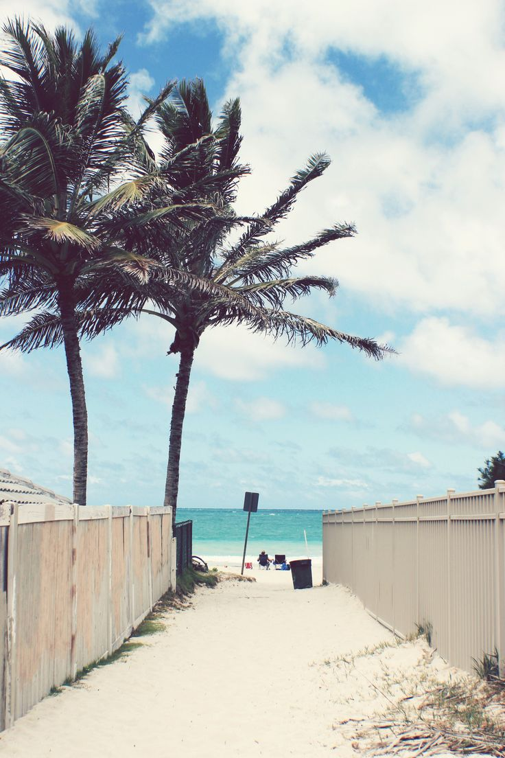 This looks like the walkway to the beach where my cousins live on the north shore of Oahu.