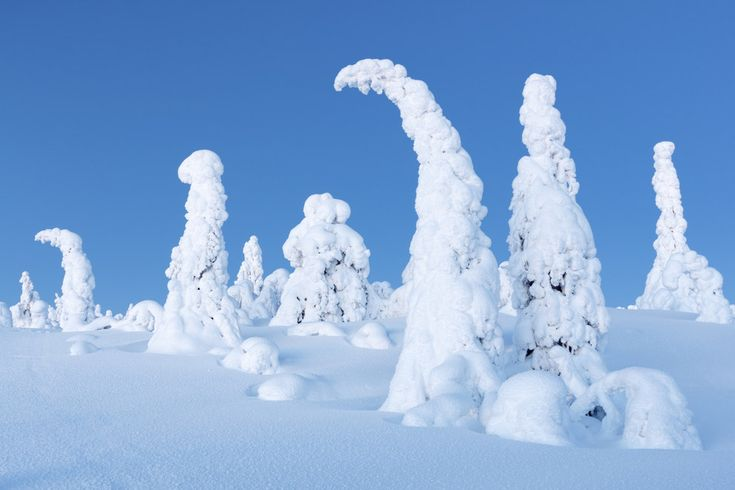 Winter wonderland in Lapland, Finland   25 Surreal Places You Won't Believe Actually Exist