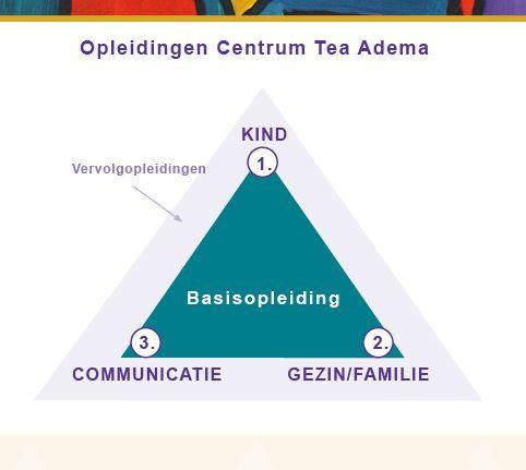infographic basisdriehoek