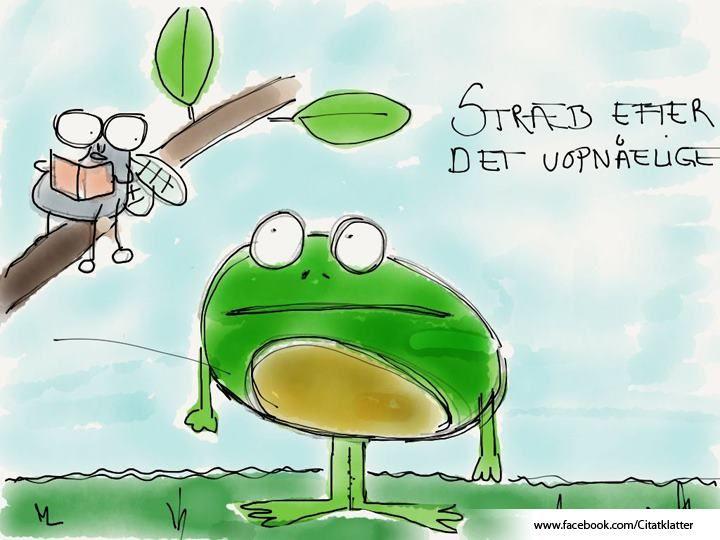"""Stræb efter det uopnåelige"""" - Johan Stangerup"""