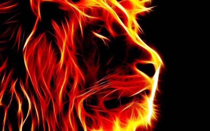Feuer Löwe