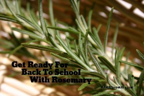 Natural healing with rosemary