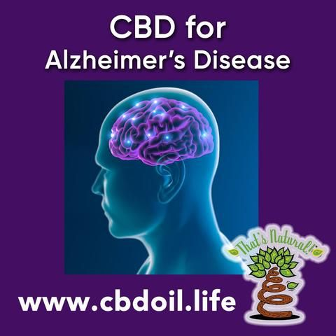 Cannabinoids like CBD may help protect the brain from diseases like Alzheimer's - the phytocannabinoid Cannabidiol (CBD) has antioxidant, anti-inflammatory, and neuroprotective properties.  See more at www.cbdoil.life