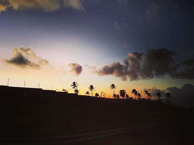 Sunset in legaspi!🌄#donsol #philippines #legaspi #travel2017 #like4like #followforfollow #enjoylife #✌🏾️#sunset #palmtrees #bdaytrip #onthetop #longweekend #vacation #travelgram #🌴 #🇵🇭 #🌄#embraceyourjourney #life #travelbug by pinkladykay. like4like #travel2017 #longweekend #🇵🇭 #life #donsol #embraceyourjourney #followforfollow #legaspi #vacation #philippines #travelgram #palmtrees #onthetop #sunset #travelbug #🌴 #bdaytrip #🌄 #✌🏾️ #enjoylife