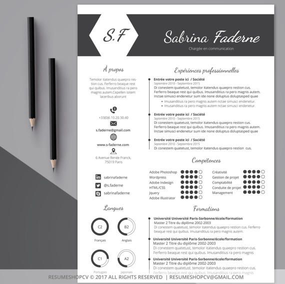 2 cv    professional resume  modern and graphic   2 letters   pack of extra pictograms