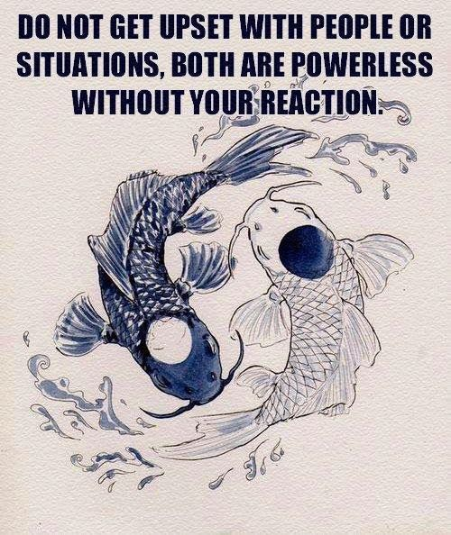 Do not get upset with people or situations, both are powerless without your reaction | Anonymous ART of Revolution
