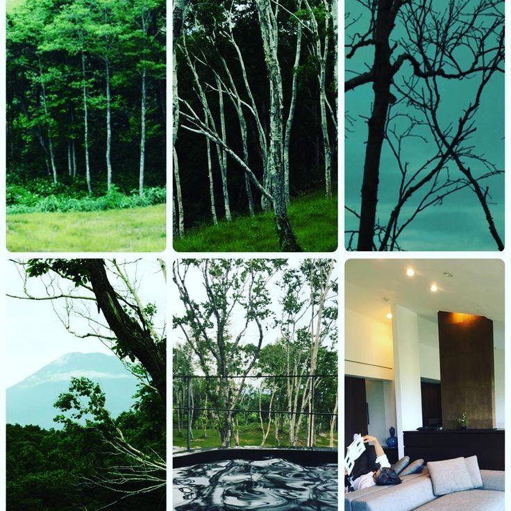 #ようやく来れた #坐忘林 #林の中で座して忘れる #禅の坐忘 #まさにその通り #最高の源泉かけ流しの温泉がふたつもお部屋に #本がすらすらと読める #温泉に入りながら本を読んでは日本の歴史、現状、未来について夫婦で語る #私達の大好きな時間 #働き者の旦那様に日々感謝 #いつも旅に連れて来てくれてありがとう  #坐忘林 #ニセコ #北海道 #花鳥風月の科学 #松岡正剛  #zaborin #niseko #hokkaido #zen #woods #travel #instatravel   zaborin.com