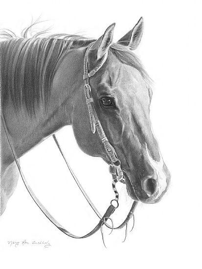horse pencil drawing | Art that inspires: animals | Pinterest