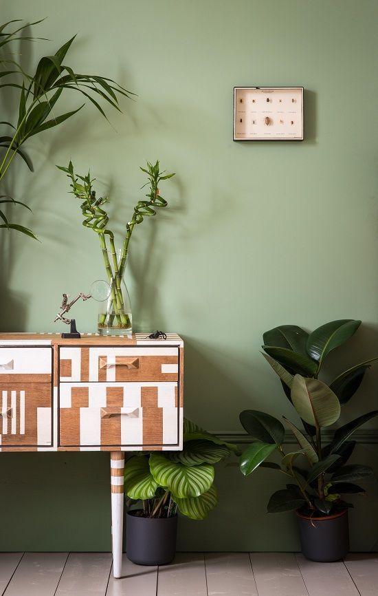 74 best Muren images on Pinterest | Wall paint colors, Green living ...